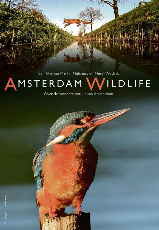Amsterdam Wildlife
