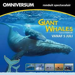 Giant Whales
