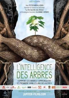 The Intelligence of Trees