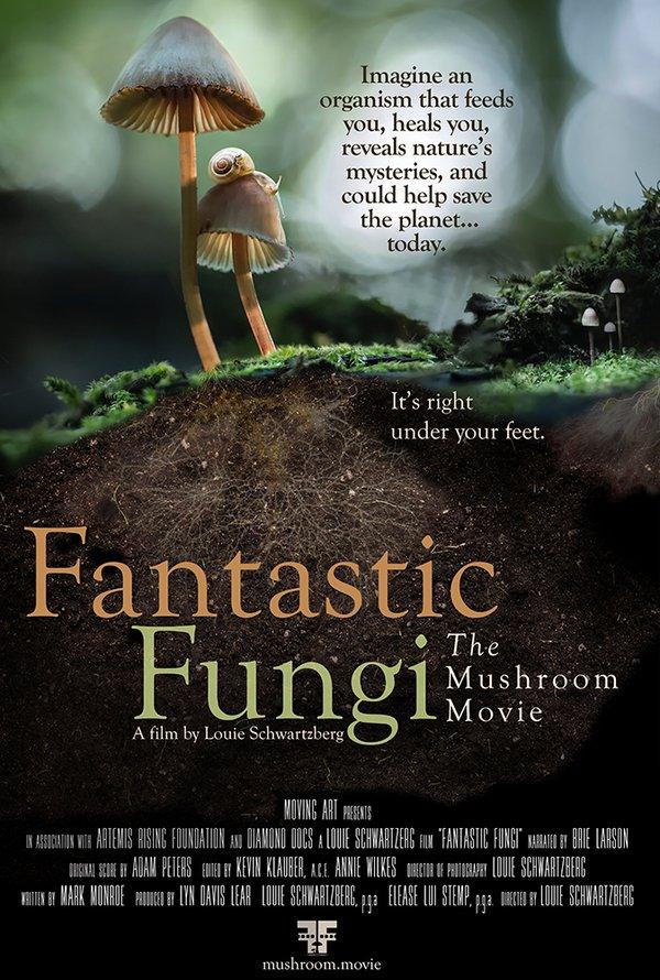 Fantastic Funghi